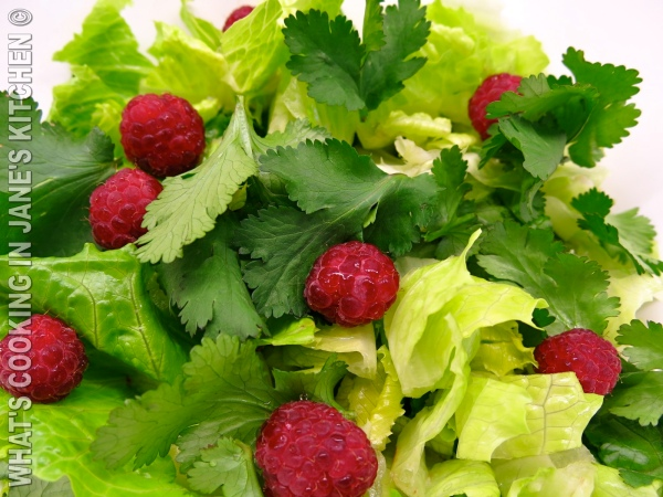 Raspberry Salad ©